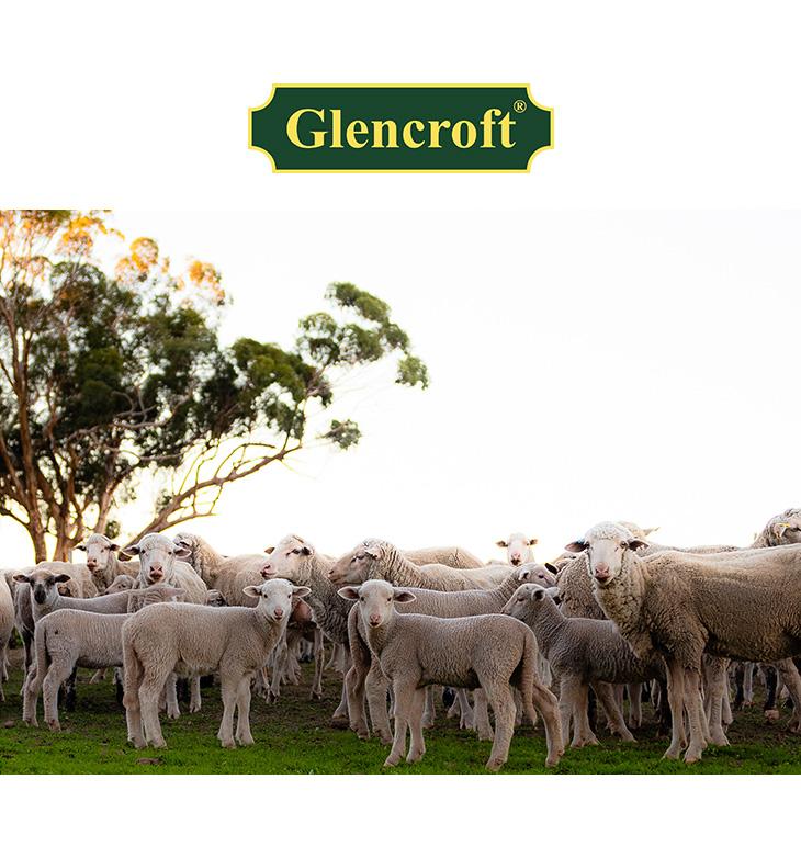 GLENCROFT